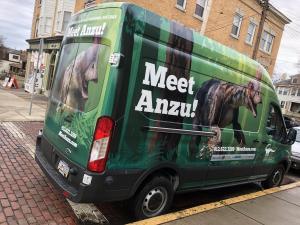 anzu dinosaur carnegie natural history museum in beechview