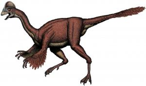 anzu dinosaur reference image
