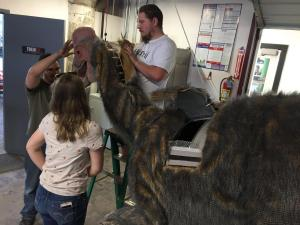 dinosaur anzu head assembly