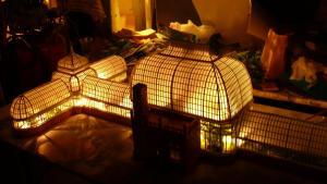 light up miniature model phipps botanical garden