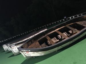 replica titanic lifeboats