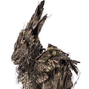 tree wolf monster suit in studio 8
