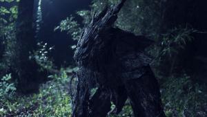 tree wolf on set 2