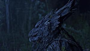 tree wolf on set 3