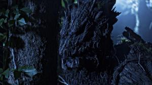 tree wolf on set 5